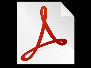 Flaws In Several Adobe Products Could Let Attackers In   Pineland